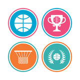 Basketball icons. Ball with basket and cup symbols. Royalty Free Stock Photography