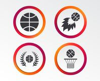 Basketball icons. Ball with basket and fireball. Basketball sport icons. Ball with basket and fireball signs. Laurel wreath symbol. Infographic design buttons Stock Image