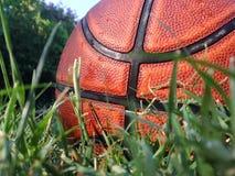 Basketball im Gras lizenzfreie stockfotografie