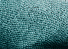 Basketball leather texture background Stock Image