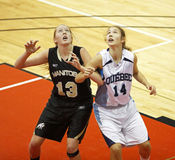 Basketball Manitoba Quebec Royalty Free Stock Photography