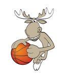 Basketball moose. Vector illustration of moose playing basketball Royalty Free Stock Photos