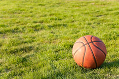 Free Basketball On The Grass Royalty Free Stock Photo - 18620885