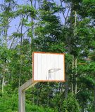 Basketball pitch in the jungle. Basketball board over pitch against green jungle background Stock Photos