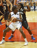 Basketball Quebec Ball Player Royalty Free Stock Image