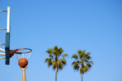 Basketball Rebound. Basketball player grabs rebound. Palm trees in background. Focus on basket royalty free stock photo