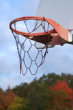 Basketball Season. Closeup of basketball backboard and hoop on outside court, against background of autumn trees. Vertical format Stock Photo