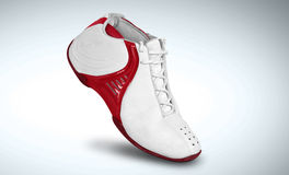 Basketball Shoes in a White Background 02 Stock Photos