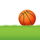 Basketball Sitting on Green Grass Illustration Stock Images