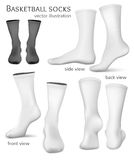 Basketball vector socks. Royalty Free Stock Images
