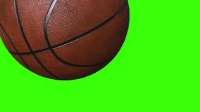 Basketballball - Gegenstand des Sports 3D belebt auf gr?nem Schirm lizenzfreie abbildung