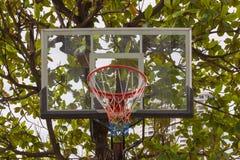 Basketballkorb im Park Stockfotos