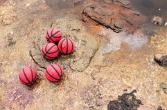 Five red basketballs on the wet rocks royalty free stock image