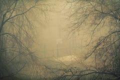 Basketdomstol i dimman royaltyfria foton