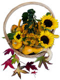 Basketful of Autumn Royalty Free Stock Image