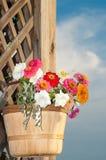 Basketful of bright flowers Stock Photo