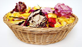 Basketful de rosas da pétala Fotos de Stock Royalty Free