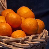 Basketfull of clementine Stock Photography