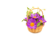 Basketry with Artificial chrysanthemum flower on white Stock Photo