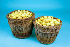 Baskets with apples Royalty Free Stock Photography