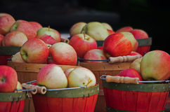 Baskets of Apples Royalty Free Stock Photography