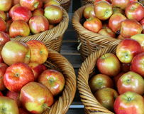 Baskets of Apples. Woven baskets filled with Smitten apples, a relatively new variety of apple  that hails from New Zealand Royalty Free Stock Photos