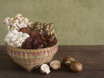 Baskets of assorted mushrooms Stock Image