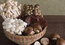 Baskets of assorted mushrooms Royalty Free Stock Photography