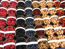 Baskets of berries at jean talon market, montreal Royalty Free Stock Photo