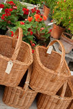Baskets with blank labels in a flower shop. Baskets with blank labels and flowers in a flower shop Stock Photography