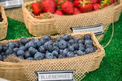 Baskets of Blueberries and Strawberries on Display. Labeled baskets of fresh blueberries and strawberries on display. Close up. Shallow Depth of Field royalty free stock images