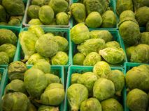 Baskets of brussel sprouts for sale royalty free stock image