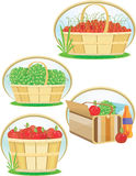 Baskets of cherries, grapes, apples and a cooler Stock Photo