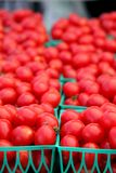 Baskets of Cherry Tomatoes Stock Photography
