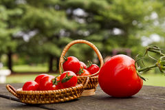 Baskets of Cherry Tomatoes Stock Photos