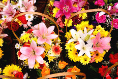 Baskets with colorful bouquets Stock Image