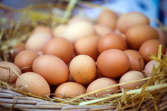 Baskets of Eggs Stock Photography