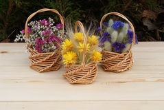 Baskets with flowers. Royalty Free Stock Photography