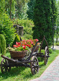 Baskets of flowers on ancient peasant cart on a sunny day Stock Photography