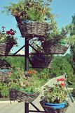 Baskets of flowers in park Royalty Free Stock Photo