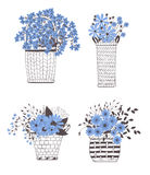 Baskets with flowers Stock Image
