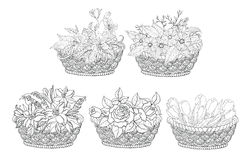 Baskets with flowers set, outline Stock Photography