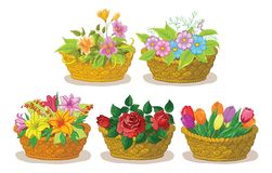 Baskets with flowers set Royalty Free Stock Photos