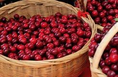 Baskets of fresh cherry Stock Image