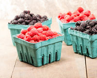 Baskets of fresh red raspberries and black raspberries. Baskets of freshly picked red and black raspberries stock photo