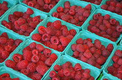 Baskets of fresh red raspberries Royalty Free Stock Photos