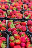 Baskets Of Fresh Strawberries In A Street Market Stock Photos