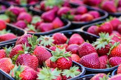 Baskets Of Fresh Strawberries In A Street Market Stock Photography
