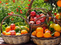 Baskets Of Fruit In Crete Greece Royalty Free Stock Photos