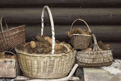 Baskets full of cones. Some baskets full of cones royalty free stock images